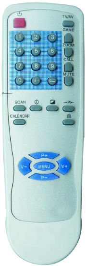 ABS Case TV Remote Control (WH-55A)