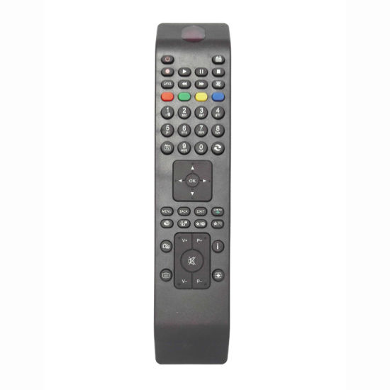 ABS Case Remote Control for TV (RD160907)